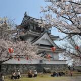 22‐05妙見山(桜)